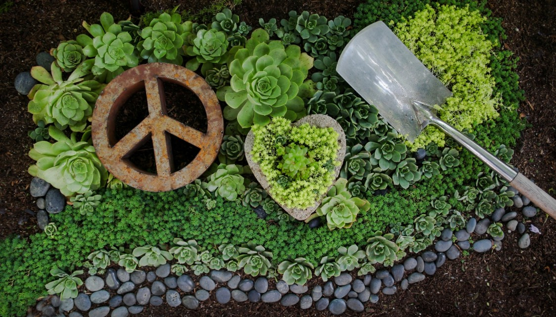 Peace love and gardening peace love and gardening for Gardening is my passion